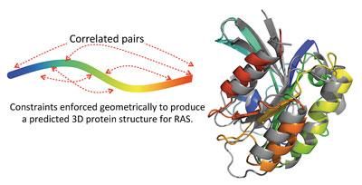 Protein Structure Amino Acids
