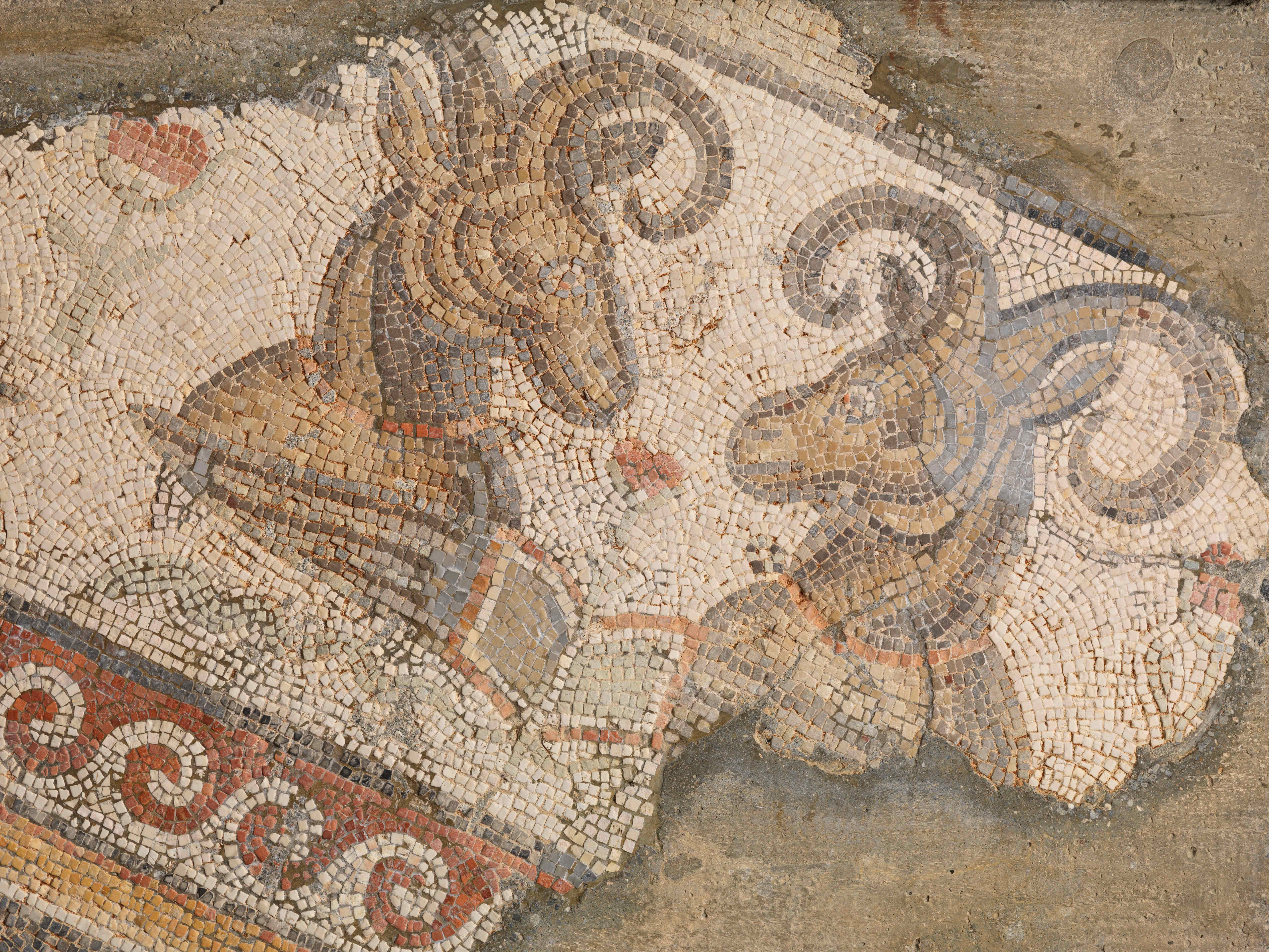 Late Roman Mosaics At The Institute For Advanced Study Institute