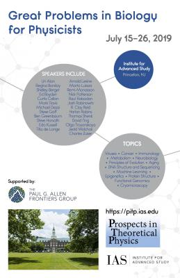 Prospects in Theoretical Physics 2016