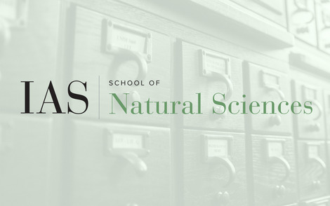 School of Natural Sciences Event