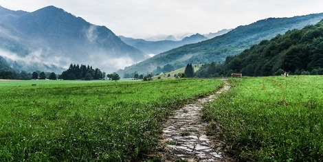 A path through a meadow with misty mountains in the distance